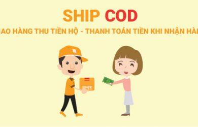Ship COD Là Gì? Cách Ship Hàng COD Qua Bưu Điện Nhanh Nhất