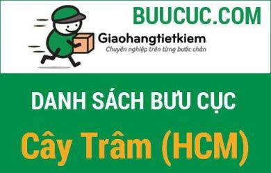Giao hàng tiết kiệm Cây Trâm (HCM)