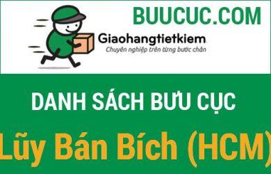 Giao hàng tiết kiệm Lũy Bán Bích (HCM)