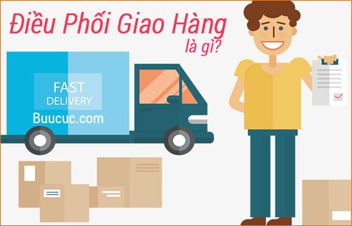 Điều phối giao hàng/nhân viên điều phối giao hàng là gì