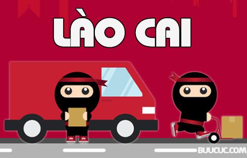 Ninja Van Lào Cai